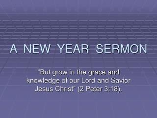 A  NEW  YEAR  SERMON