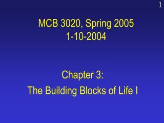 MCB 3020, Spring 2005 1-10-2004