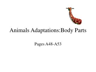 Animals Adaptations:Body Parts