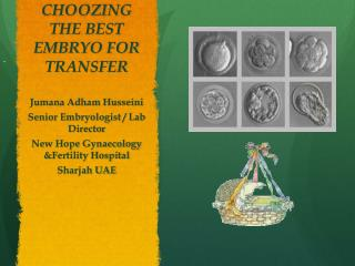 CHOOZING THE BEST EMBRYO FOR TRANSFER
