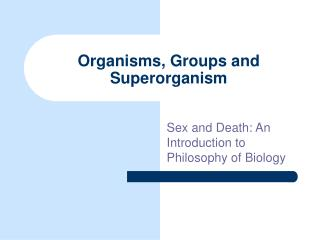 Organisms, Groups and Superorganism