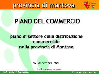 piano di settore della distribuzione commerciale nella provincia di Mantova