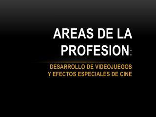 AREAS DE LA PROFESION: