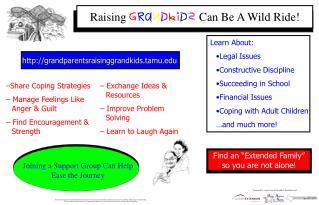 Raising  G rA n d k i d s  Can Be A Wild Ride!