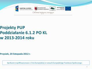 Projekty PUP  Poddziałanie 6.1.2 PO KL  w 2013-2014 roku  Przysiek, 20 listopada  20 12  r.