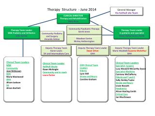 Therapy  Structure  - June 2014