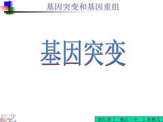 基因突变和基因重组