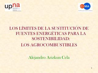 LOS LÍMITES DE LA SUSTITUCIÓN DE FUENTES ENERGÉTICAS PARA LA SOSTENIBILIDAD: LOS AGROCOMBUSTIBLES