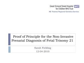 Proof of Principle for the Non-Invasive Prenatal Diagnosis of Fetal Trisomy 21