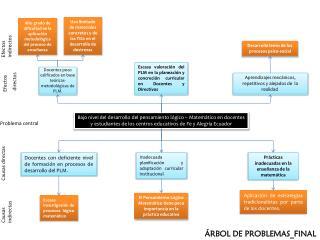 Docentes poco calificados en base teóricas-metodológicas de PLM.