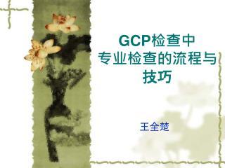 GCP 检查中 专业检查的流程与技巧