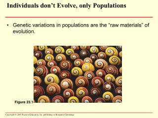 Individuals don't Evolve, only Populations