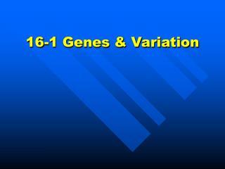 16-1 Genes & Variation