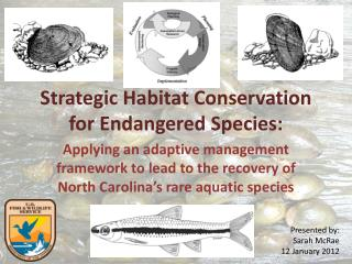 Strategic Habitat Conservation for Endangered Species: