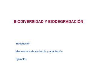 BIODIVERSIDAD Y BIODEGRADACIÓN