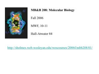 MB&B 208: Molecular Biology Fall 2006 MWF, 10-11 Hall-Atwater 84