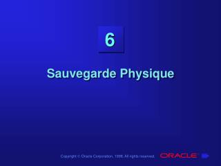 Sauvegarde Physique