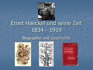 Ernst Haeckel und seine Zeit 1834 - 1919