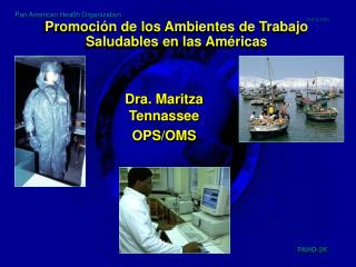 Promoción de los Ambientes de Trabajo Saludables en las Américas
