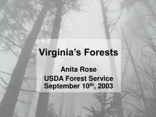 Anita Rose USDA Forest Service September 10 th , 2003