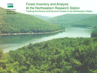 Forest Inventory and Analysis At the Northeastern Research Station
