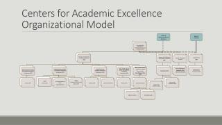 Centers for Academic Excellence  Organizational Model