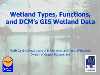 Wetland Types, Functions, and DCM's GIS Wetland Data