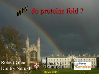 do proteins fold ?