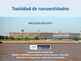 Toxicidad  de  nanoentidades