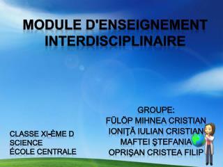Module  d'enseignement interdisciplinaire