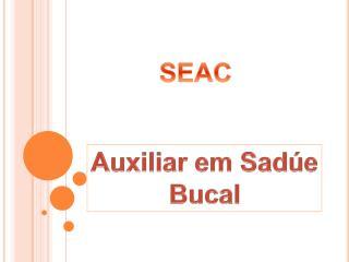 Auxiliar em Sadúe Bucal