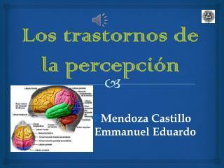 Los trastornos de la percepción