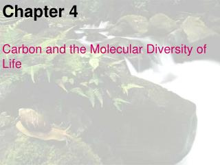 Chapter 4 Carbon and the Molecular Diversity of Life