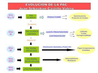 EVOLUCIÓN DE LA PAC Juan Sebastián Castillo Valero
