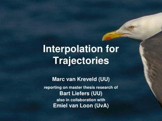 Interpolation for Trajectories