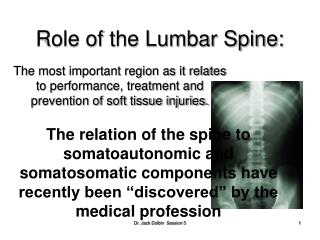 Role of the Lumbar Spine: