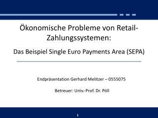 Ökonomische Probleme von Retail-Zahlungssystemen: Das Beispiel Single Euro Payments Area (SEPA)