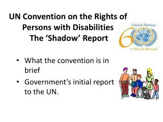UN Convention on the Rights of Persons with Disabilities   The 'Shadow' Report