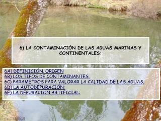 6) LA CONTAMINACIÓN DE LAS AGUAS MARINAS Y CONTINENTALES: