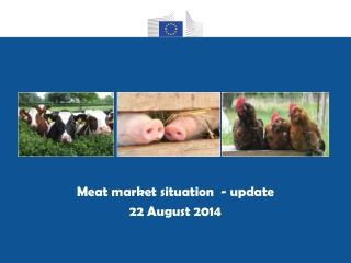 Meat market situation  - update 22 August 2014