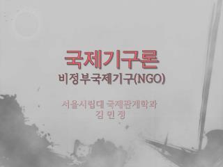 국제기구론 비정부국제기구 (NGO)