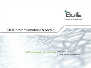 Bull Telecommunications & Media