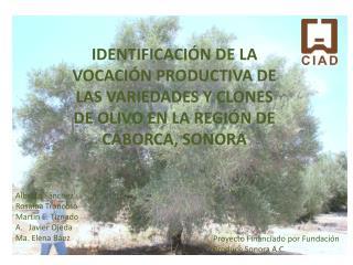 Proyecto Financiado por Fundación Produce Sonora A.C.
