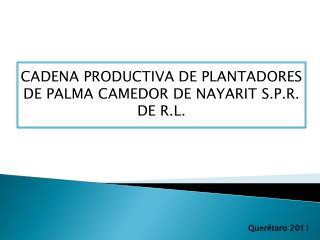 CADENA PRODUCTIVA DE PLANTADORES DE PALMA CAMEDOR DE NAYARIT S.P.R. DE R.L.