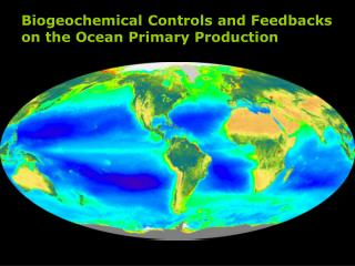 Biogeochemical Controls and Feedbacks on the Ocean Primary Production