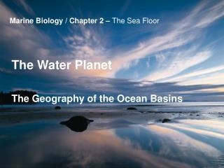Marine Biology / Chapter 2 –  The Sea Floor