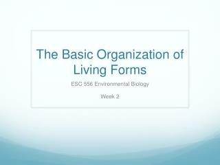 The Basic Organization of Living Forms