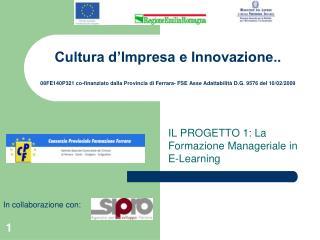 IL PROGETTO 1: La Formazione Manageriale in E-Learning