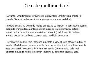 Ce este multimedia ?