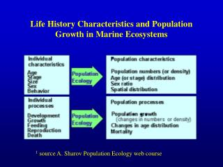 Life History Characteristics and Population Growth in Marine Ecosystems